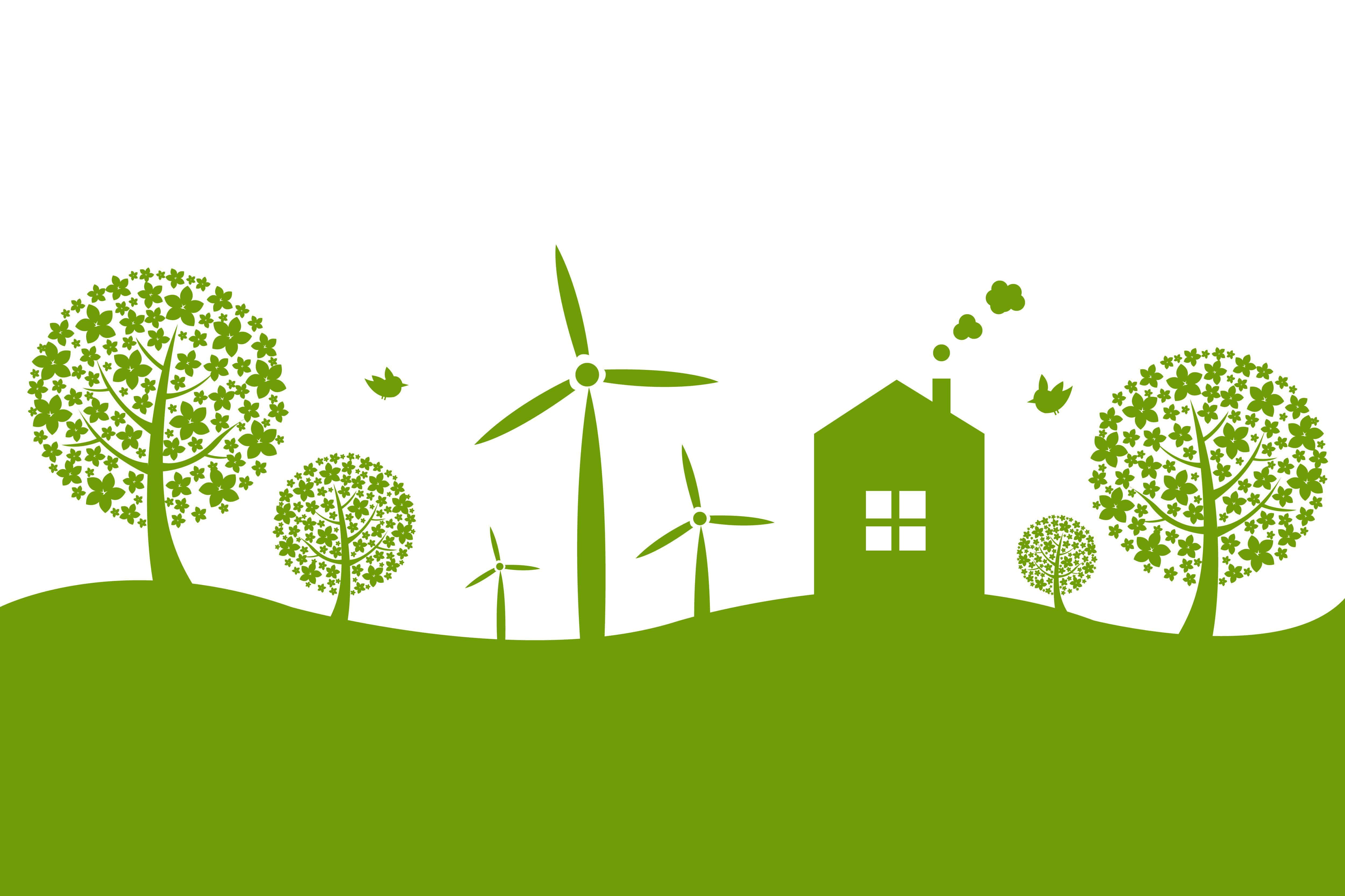 Sustentabilidade: você já ouviu isso?